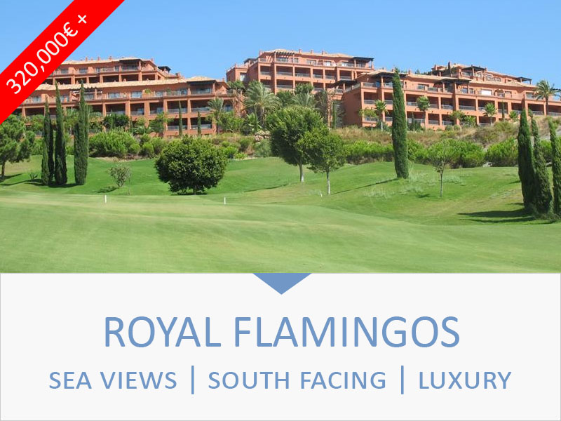 royal flamingos property for sale.jpg (132 KB)